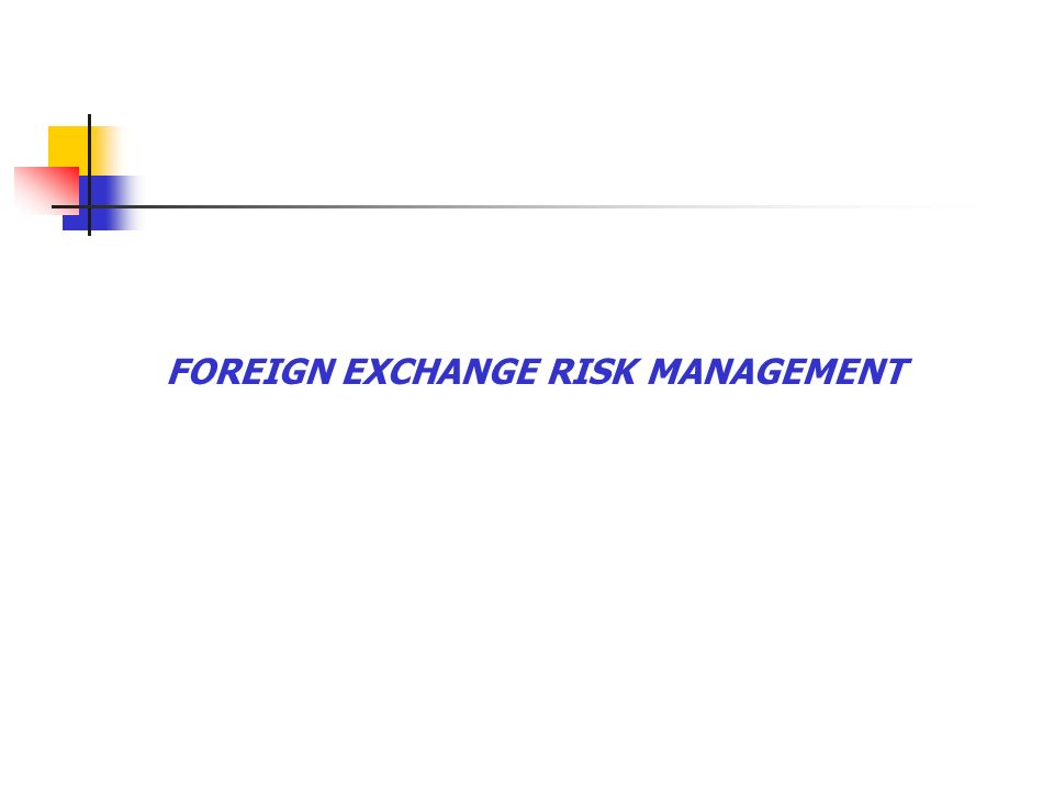 1 Foreign Exchange Risk Management