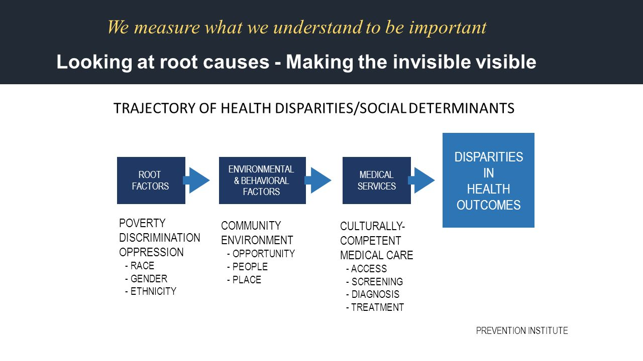 Health And Housing Social Determinants Of Health And Access Examples