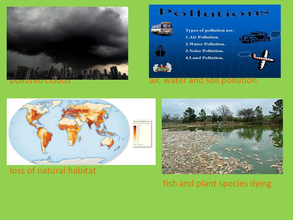 4 Polluted Clouds Air Water And Soil Pollution Loss Of Natural Habitat Fish Plant Species Dying