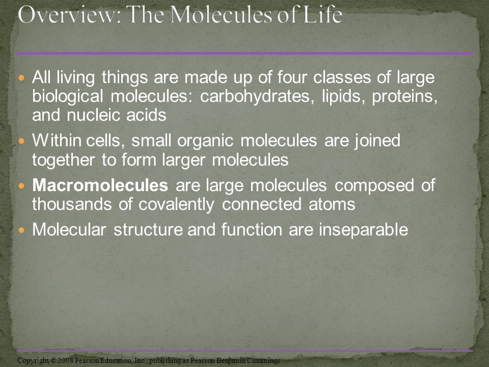 how are organic molecules related to all living things
