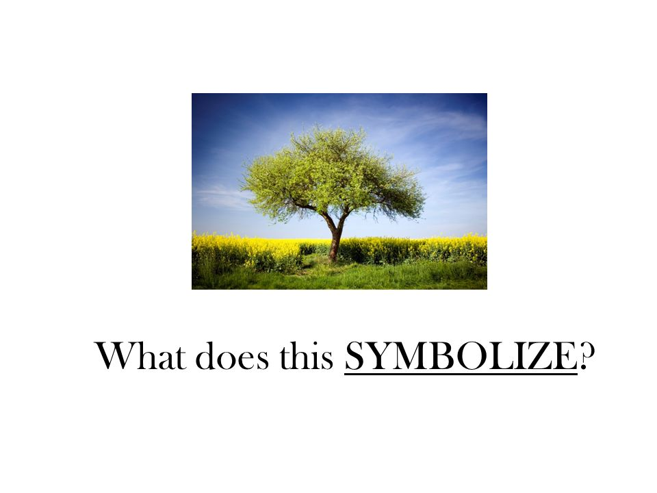Symbolism What Do You See What Words Come To Mind Ppt Download