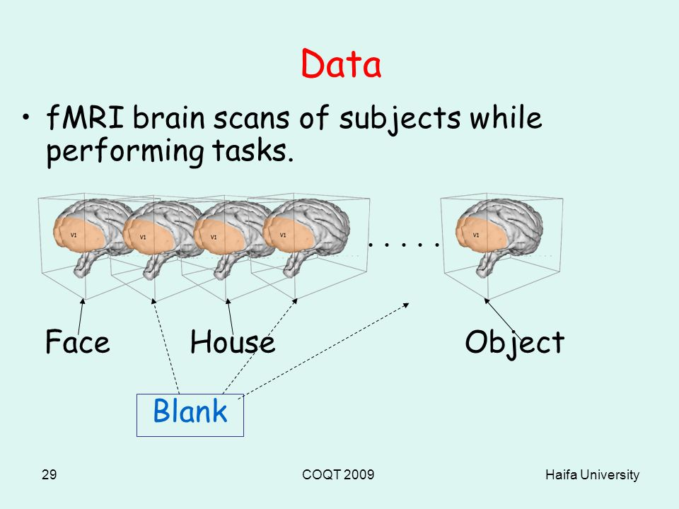 Haifa UniversityCOQT 200929 Data fMRI brain scans of subjects while performing tasks.