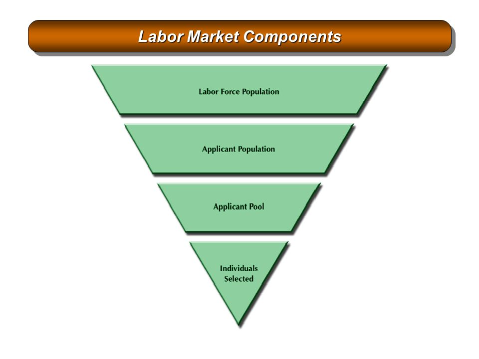 components of labor