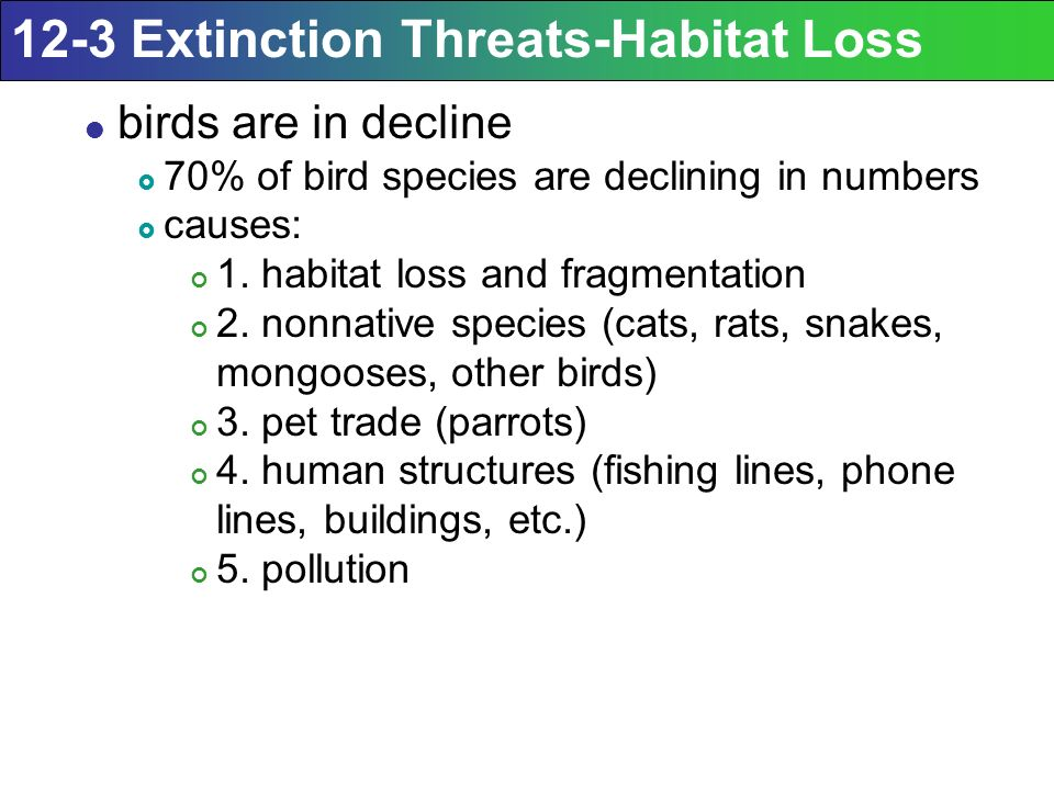 Area VII: Global Change VIIC: Loss of Biodiversity  - ppt download