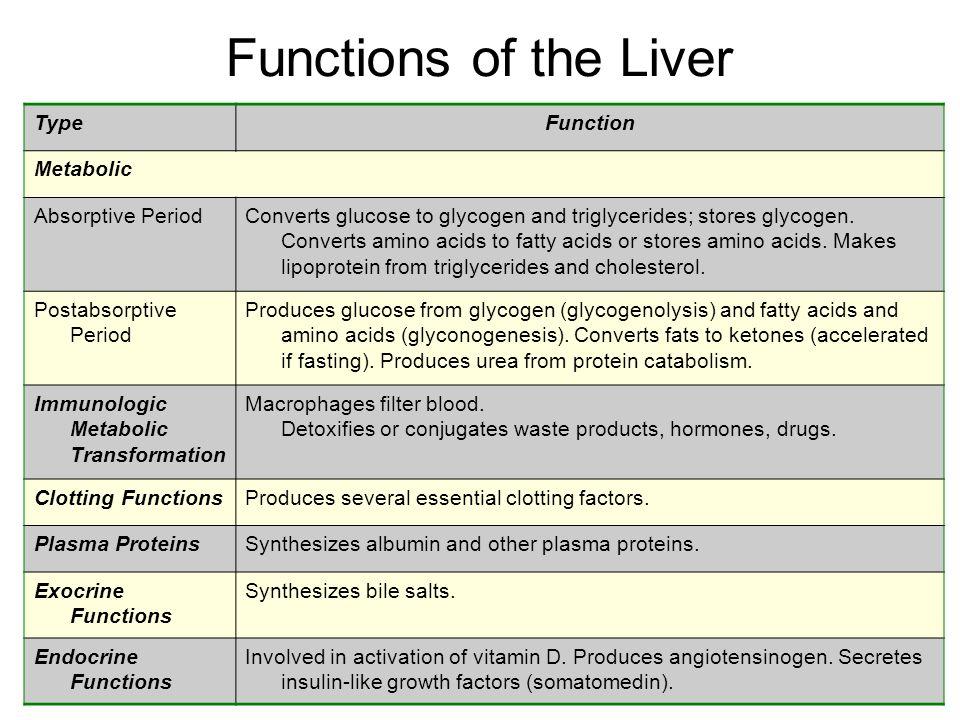 Liver Biochemistry Liver Largest Internal Organ Weighs About Gram