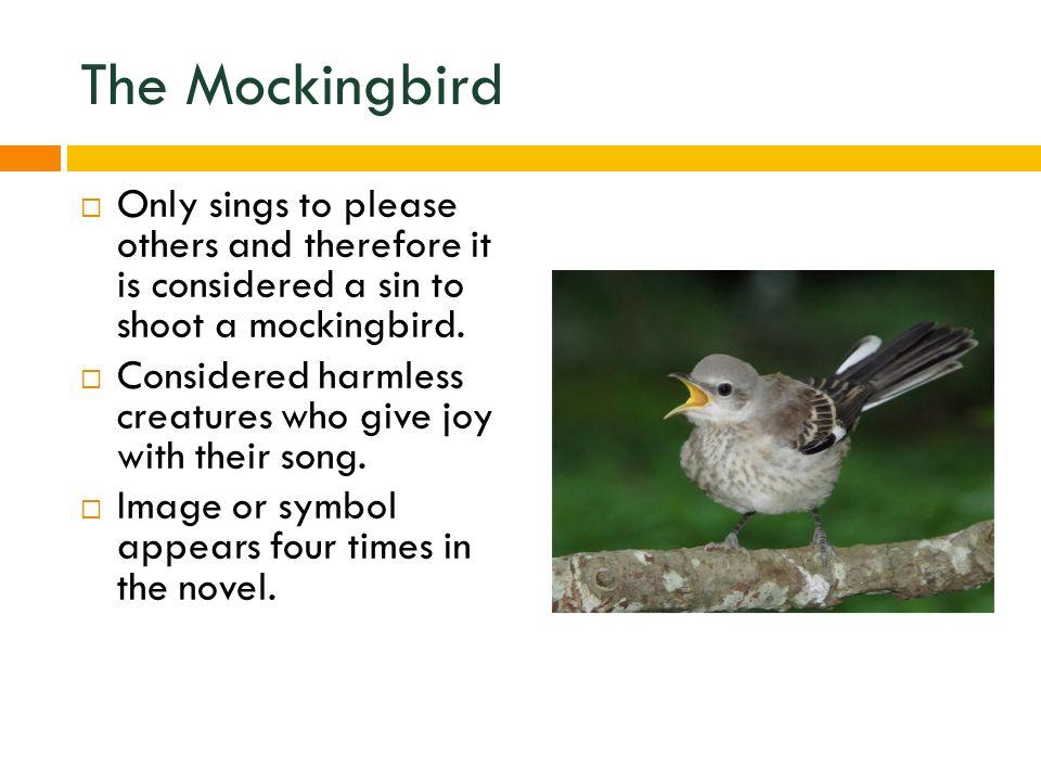 to shoot a mockingbird