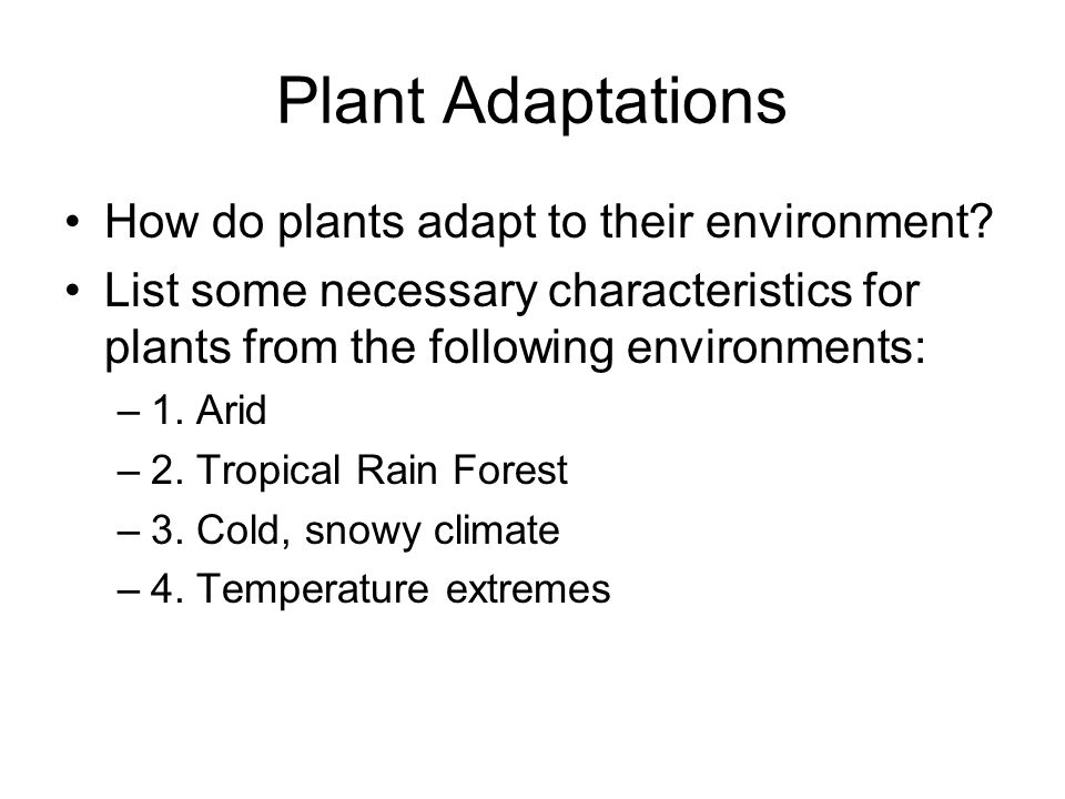 how do plants adapt to their environment