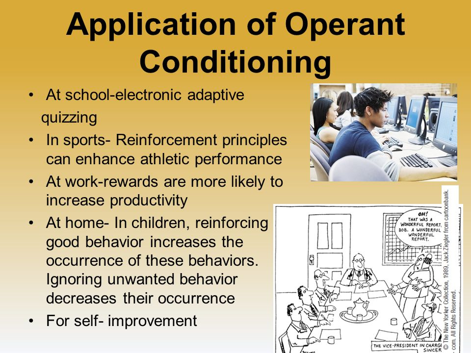 operant conditioning experiments for students