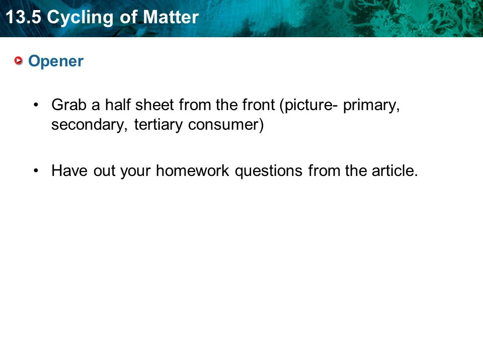 13.5 Cycling of Matter Opener Grab a half sheet from the front (picture- primary, secondary, tertiary consumer) Have out your homework questions from the article.