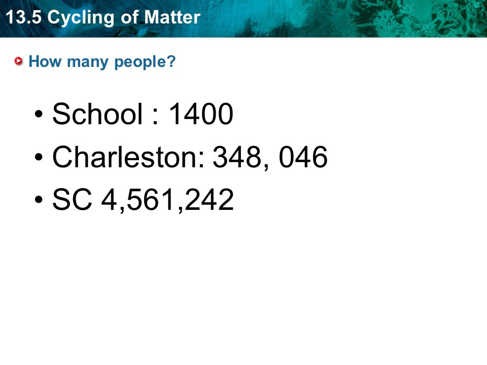 13.5 Cycling of Matter How many people School : 1400 Charleston: 348, 046 SC 4,561,242