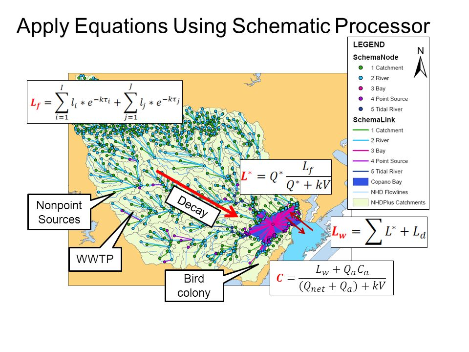 29 apply equations using schematic processor nonpoint sources wwtp bird  colony decay