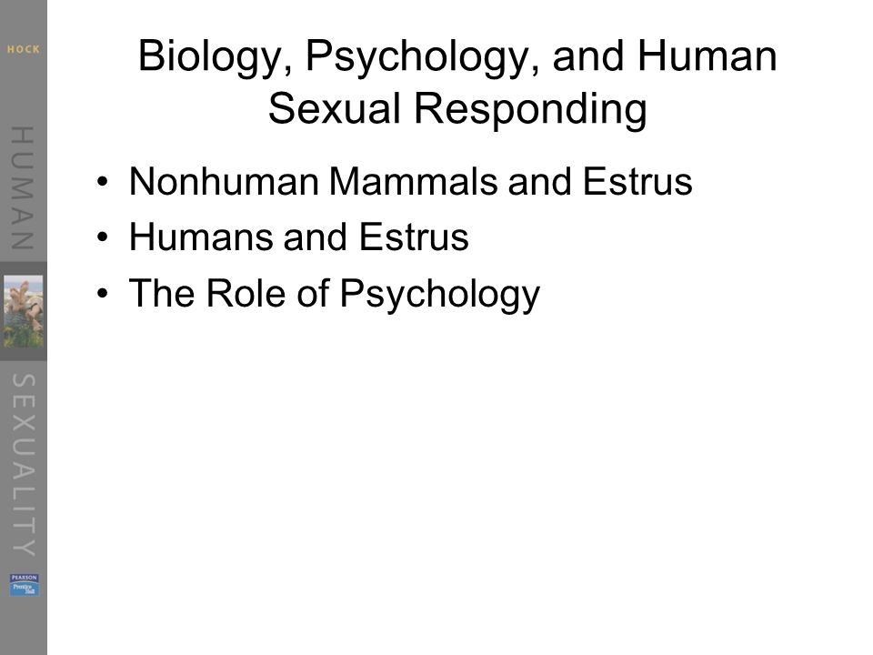 Biology, Psychology, and Human Sexual Responding Nonhuman Mammals and Estrus Humans and Estrus The Role of Psychology