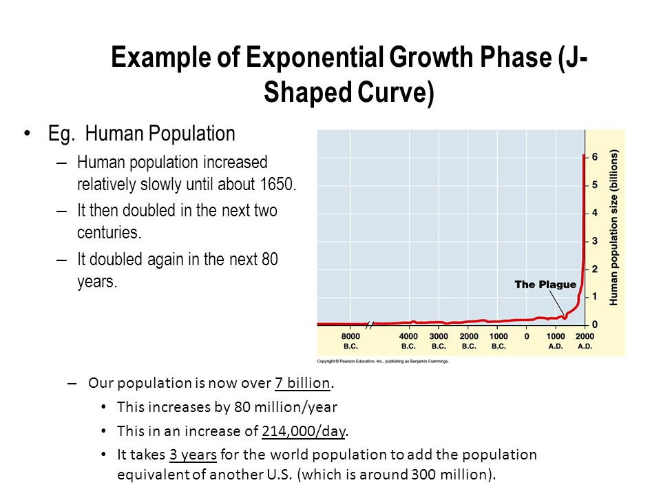 Human Population Example Of Exponential Growth Phase J Shaped