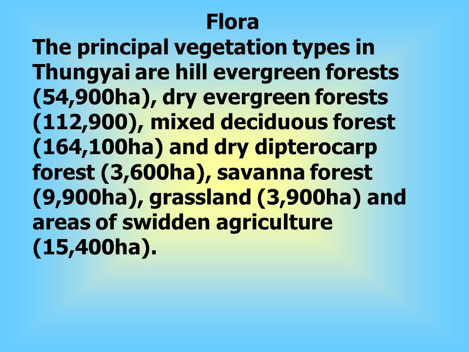 Flora The principal vegetation types in Thungyai are hill evergreen forests (54,900ha), dry evergreen forests (112,900), mixed deciduous forest (164,100ha) and dry dipterocarp forest (3,600ha), savanna forest (9,900ha), grassland (3,900ha) and areas of swidden agriculture (15,400ha).
