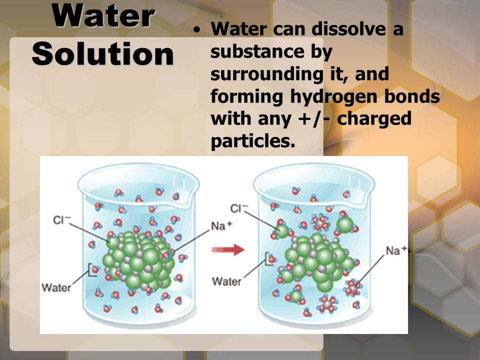 Salt Water Solution Water can dissolve a substance by surrounding it, and forming hydrogen bonds with any +/- charged particles.
