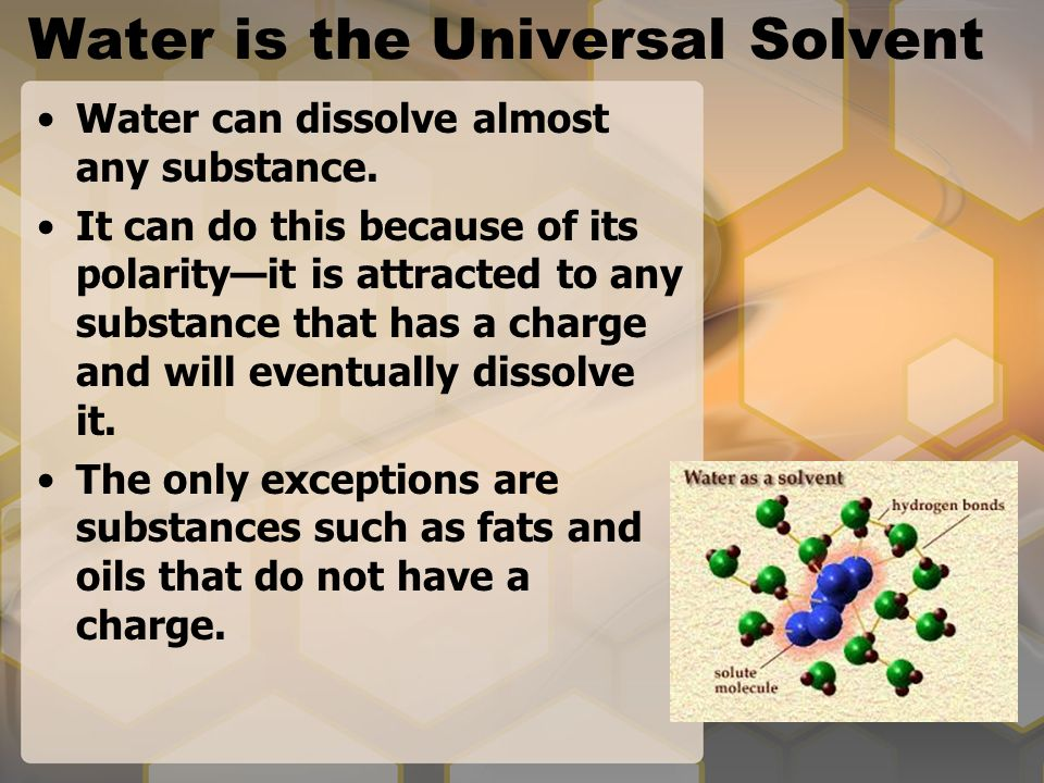 Water is the Universal Solvent Water can dissolve almost any substance.