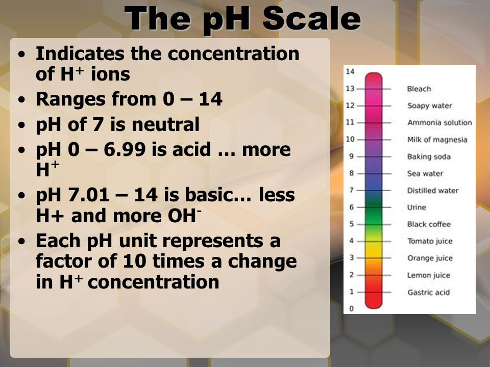 The pH Scale Indicates the concentration of H + ions Ranges from 0 – 14 pH of 7 is neutral pH 0 – 6.99 is acid … more H + pH 7.01 – 14 is basic… less H+ and more OH - Each pH unit represents a factor of 10 times a change in H + concentration
