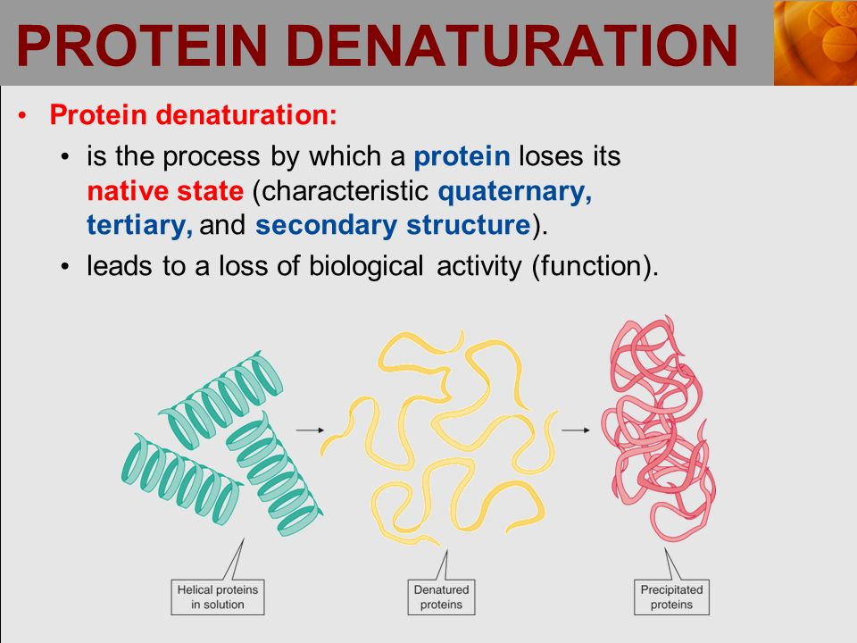 19 protein denaturation
