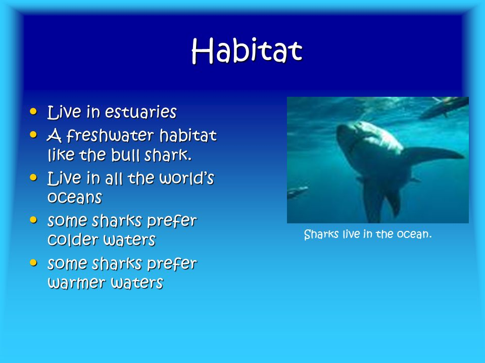Habitat Habitat Live in estuaries Live in estuaries A