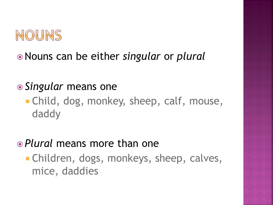  Nouns can be either singular or plural  Singular means one  Child, dog, monkey, sheep, calf, mouse, daddy  Plural means more than one  Children, dogs, monkeys, sheep, calves, mice, daddies