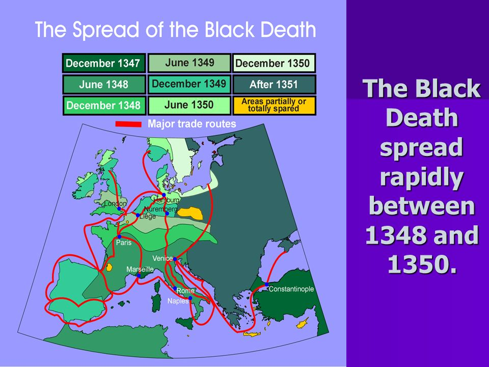 The Black Death spread rapidly between 1348 and 1350.