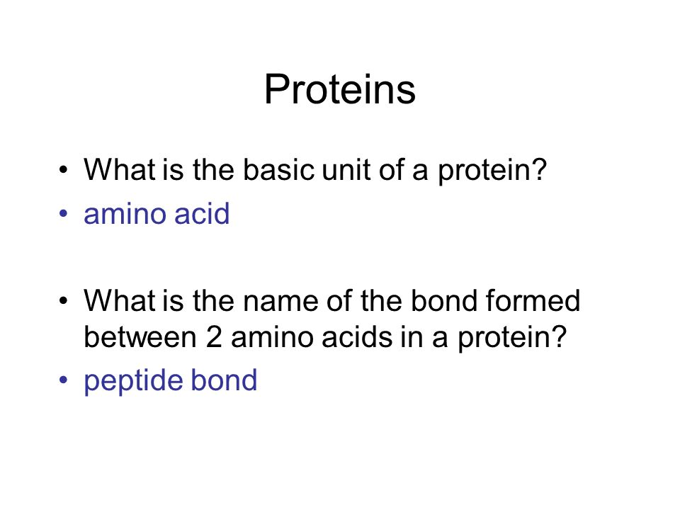 what is the basic unit of a protein