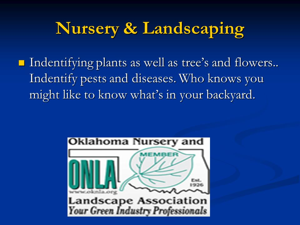Nursery & Landscaping Indentifying plants as well as tree's and flowers..