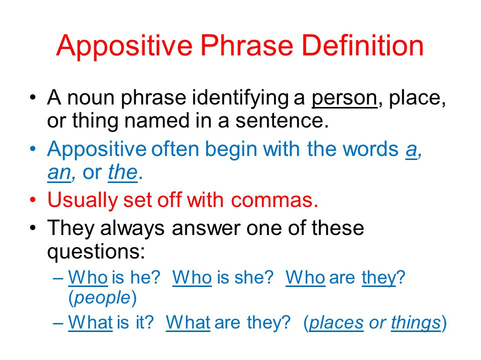 appositive phrase adapted from grammar for middle school a sentence