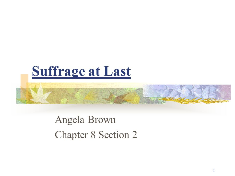 Suffrage at Last Angela Brown Chapter 8 Section 2 1