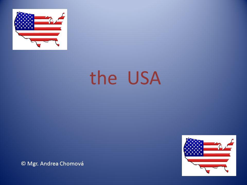 The Usa Mgr Andrea Chomov Symbols Of The Usa New York