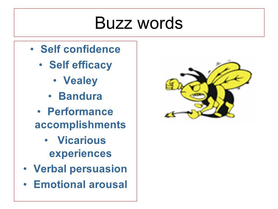 verbal persuasion in sport