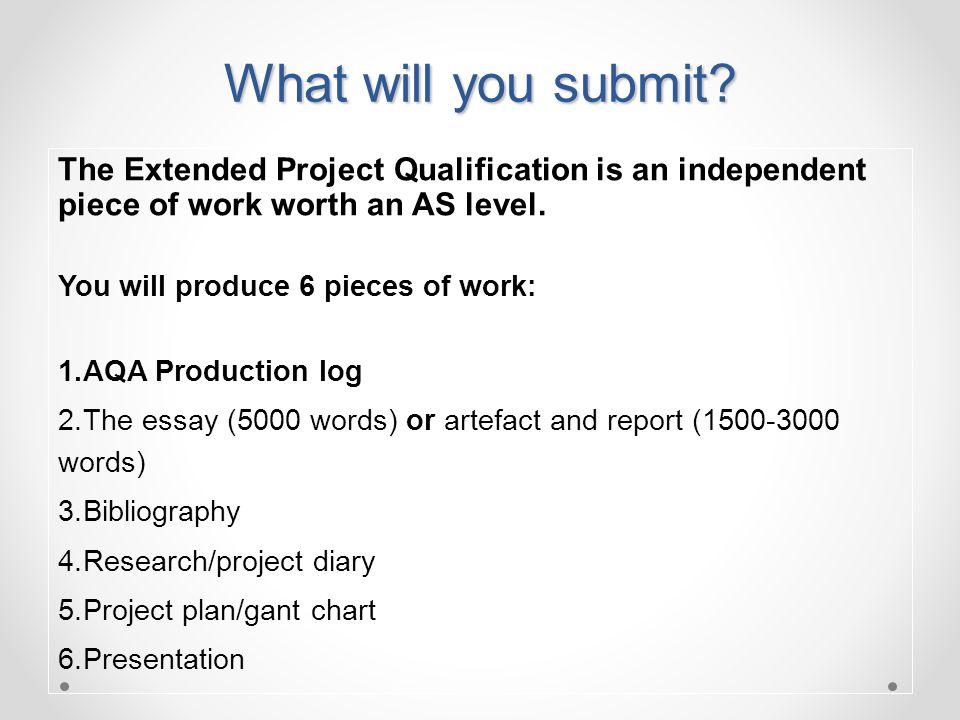 project plan sample pdf