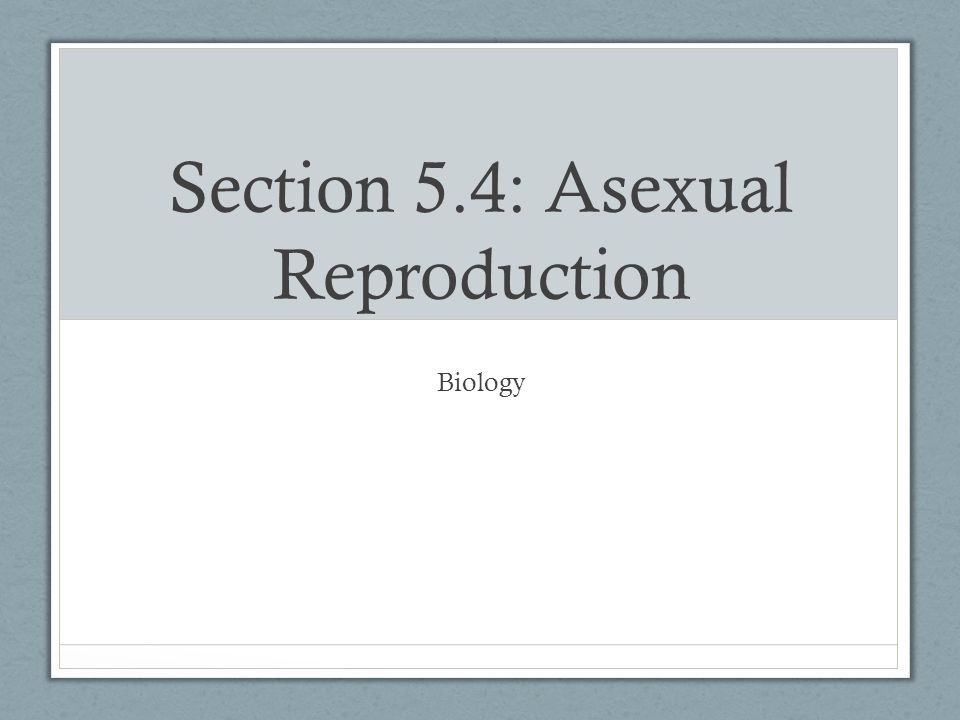 Biology 5.4 asexual reproduction in bacteria