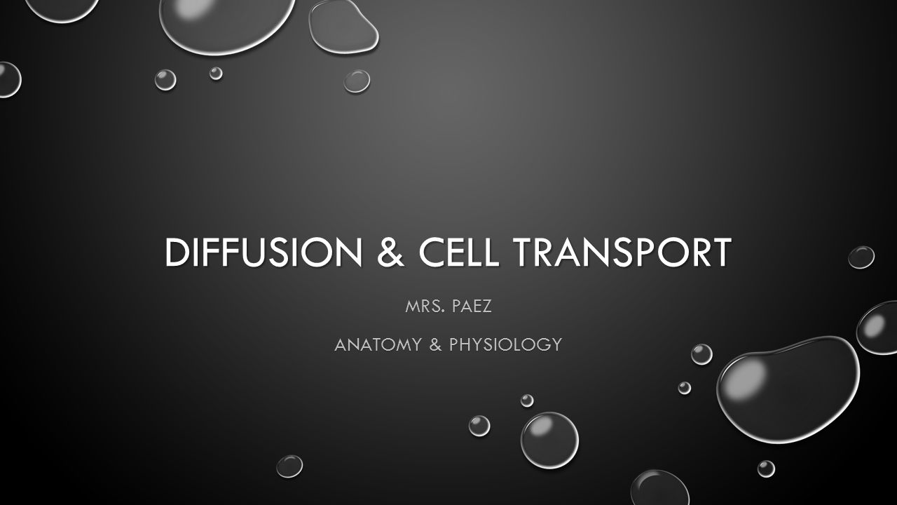 DIFFUSION & CELL TRANSPORT MRS. PAEZ ANATOMY & PHYSIOLOGY. - ppt ...