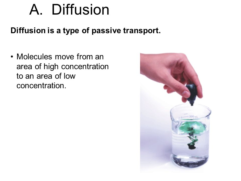 Diffusion is a type of passive transport.