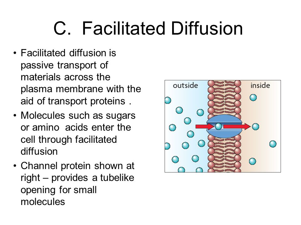Facilitated diffusion is passive transport of materials across the plasma membrane with the aid of transport proteins.