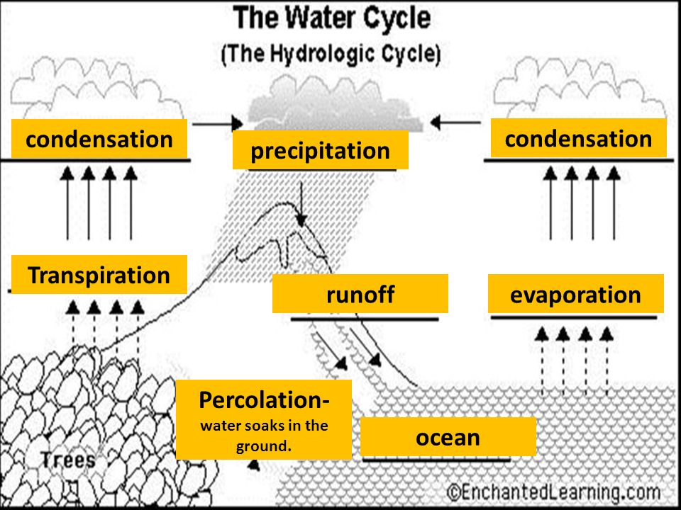 Water cycle surface water movement eric angat teacher ppt download transpiration condensation evaporation condensation precipitation runoff percolation water soaks in the ground ccuart Gallery