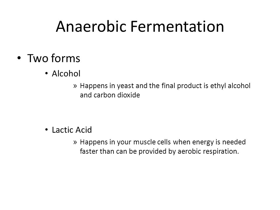 Anaerobic Fermentation Two forms Alcohol » Happens in yeast and the final product is ethyl alcohol and carbon dioxide Lactic Acid » Happens in your muscle cells when energy is needed faster than can be provided by aerobic respiration.