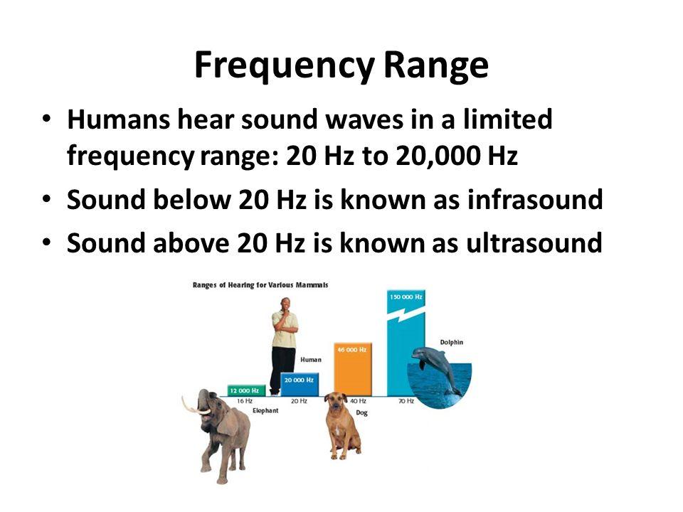 Sound Chapter Properties of Sound Sound waves – Longitudinal Waves
