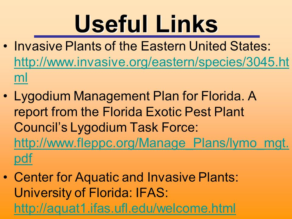 Useful Links Invasive Plants of the Eastern United States:   ml   ml Lygodium Management Plan for Florida.