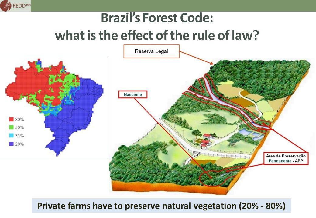 brazil area codes