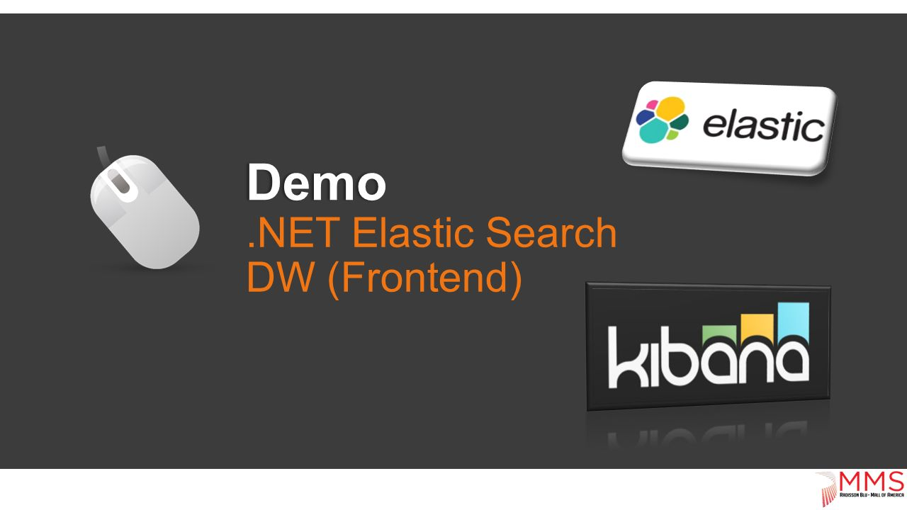 Demo.NET Elastic Search DW (Frontend)