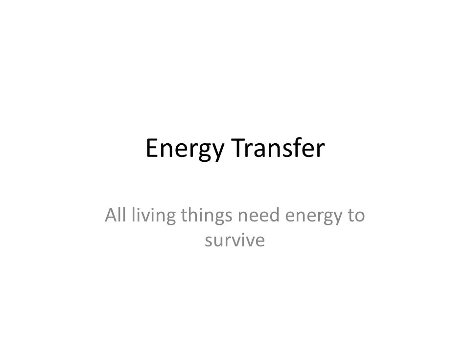 Energy Transfer All living things need energy to survive