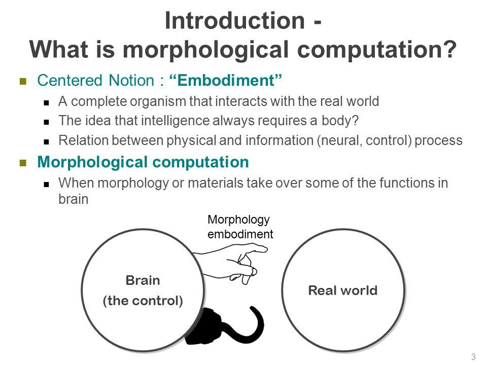 Morphology and Computation