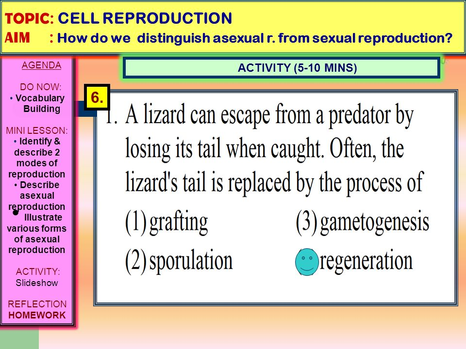 Difference between asexual reproduction and regeneration ministries