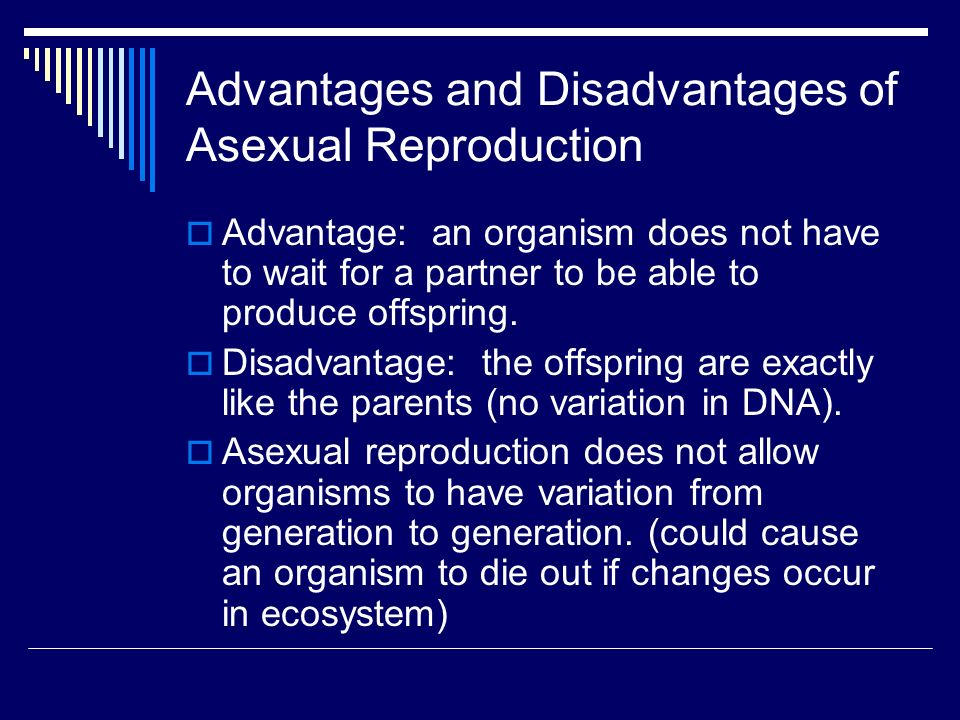 A disadvantage of asexual reproduction is that off springs