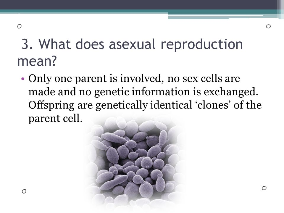 Cell division involved in asexual reproduction one parent