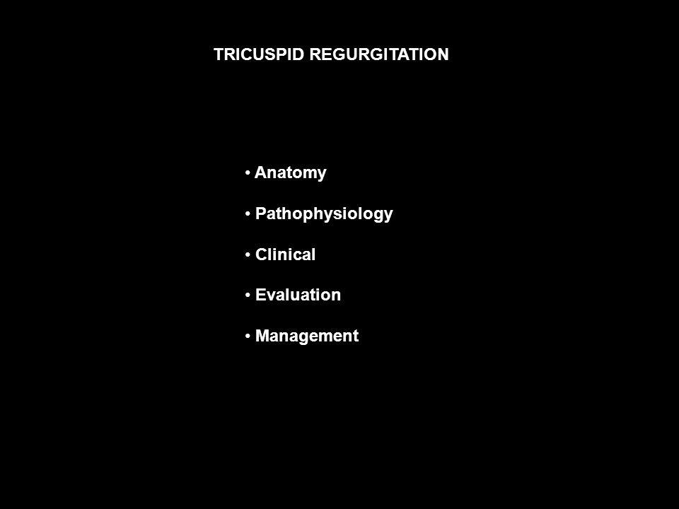 2 TRICUSPID REGURGITATION Anatomy Pathophysiology Clinical Evaluation Management