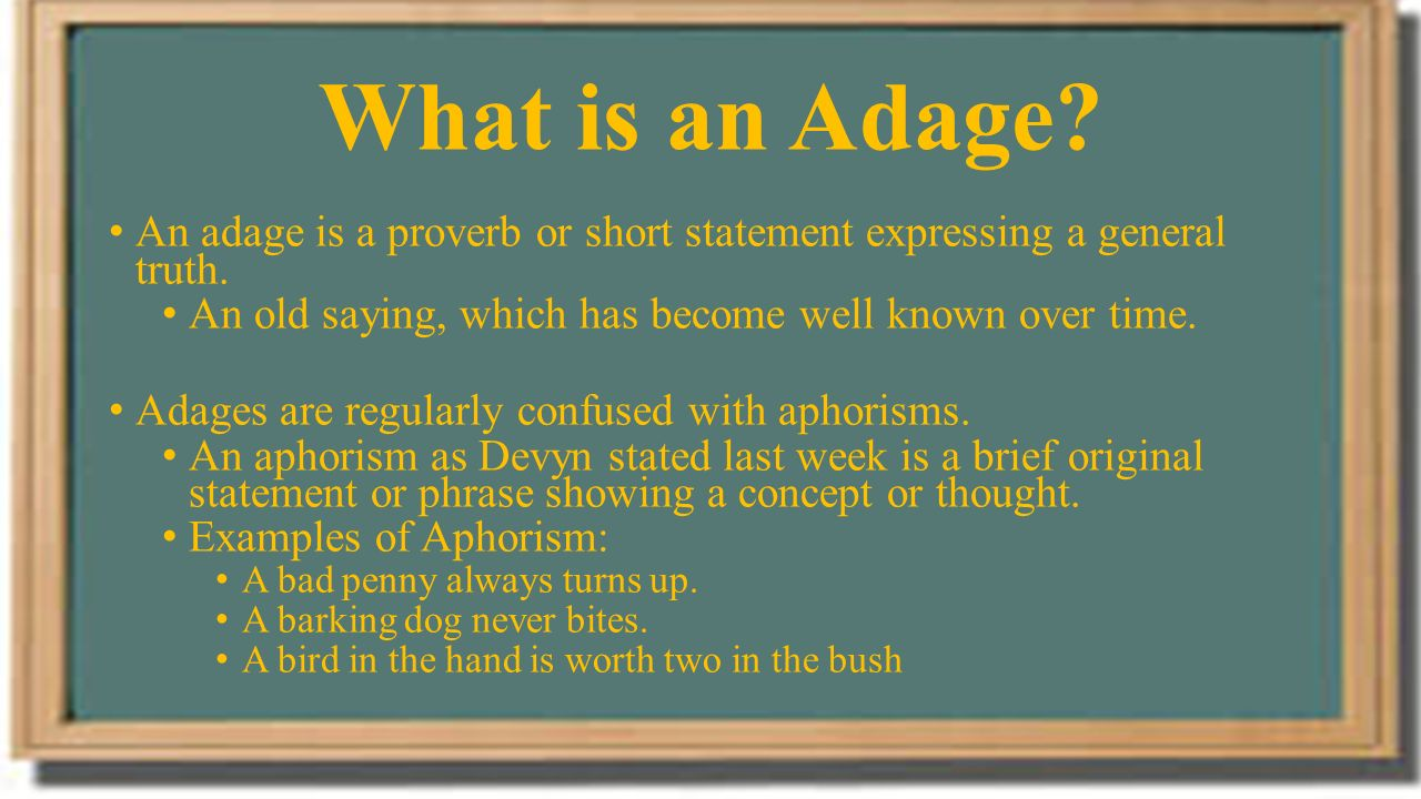 What are aphorisms 19