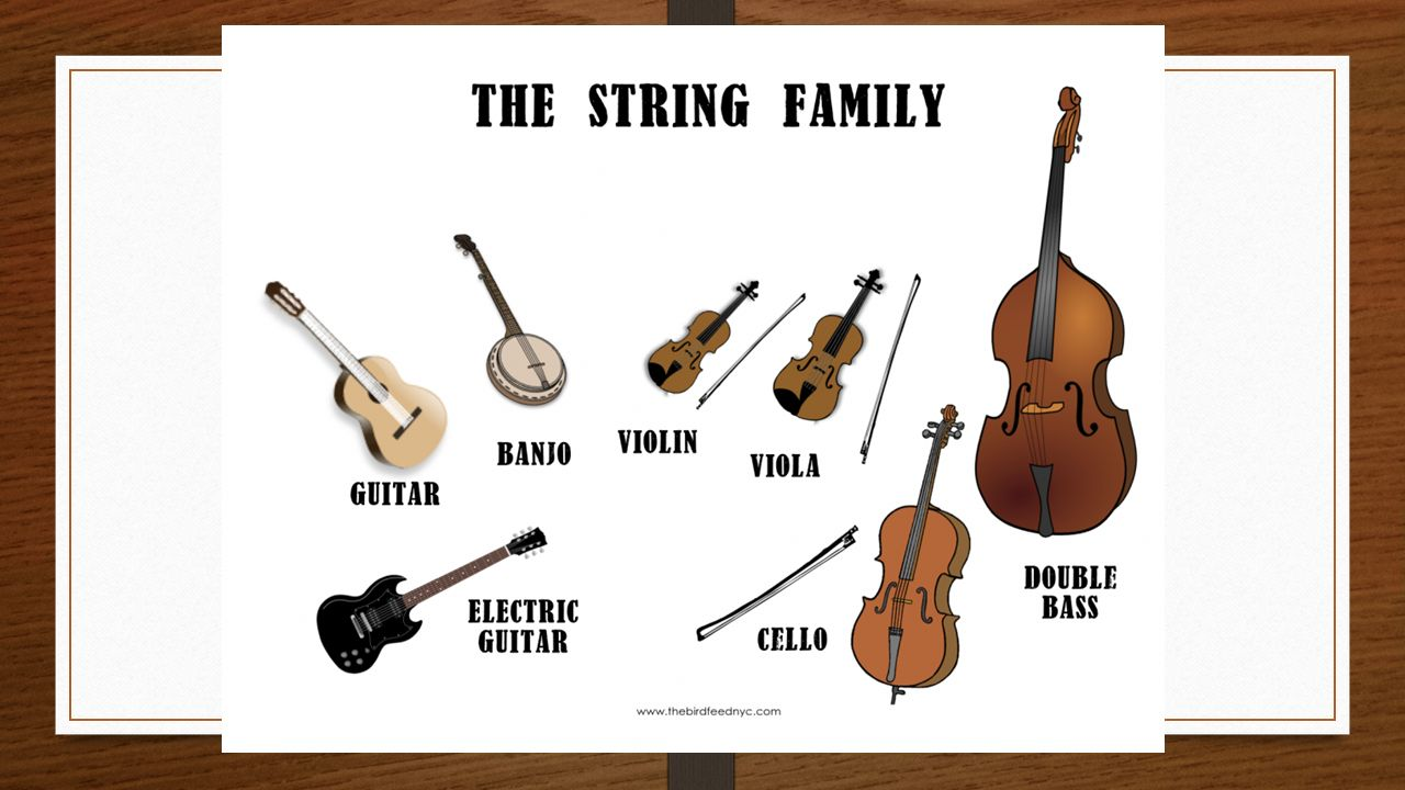 Musical Instruments Exploring Music Unit 3 The String